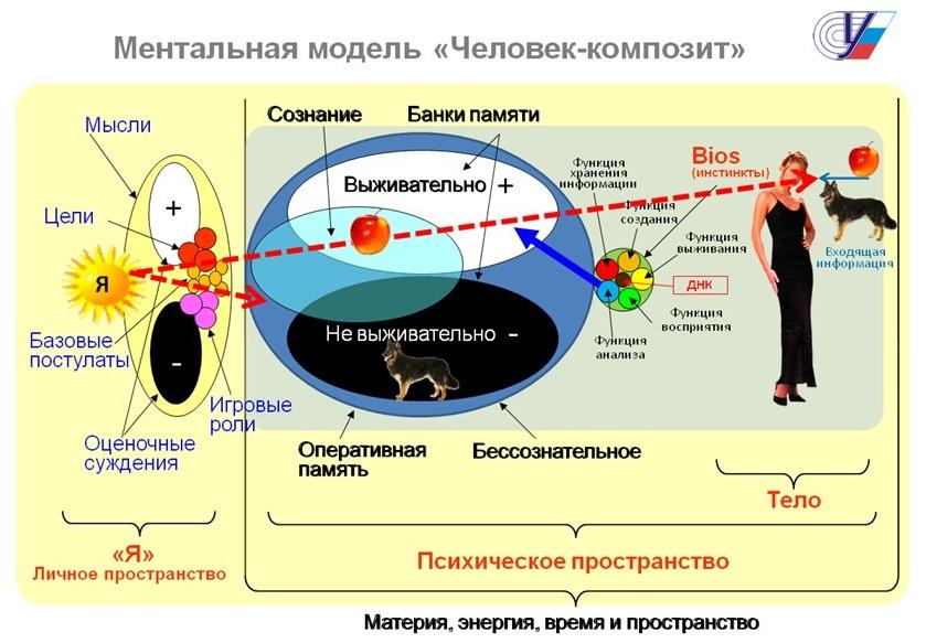 2 Схема «Человек»